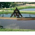 Parque Olho D'água